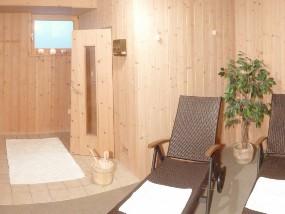 Sauna Almblick